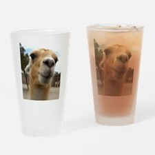 Llama Drinking Glass