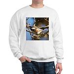 Chickadee in Tree Sweatshirt