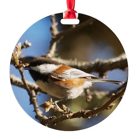 Chickadee in Tree Round Ornament