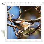 Chickadee in Tree Shower Curtain