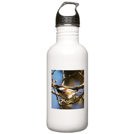 Chickadee in Tree Stainless Water Bottle 1.0L