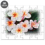 plumeria.jpg Puzzle