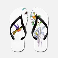 Hummingbirds Flip Flops