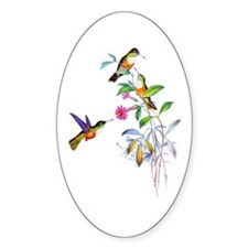 Hummingbirds Decal