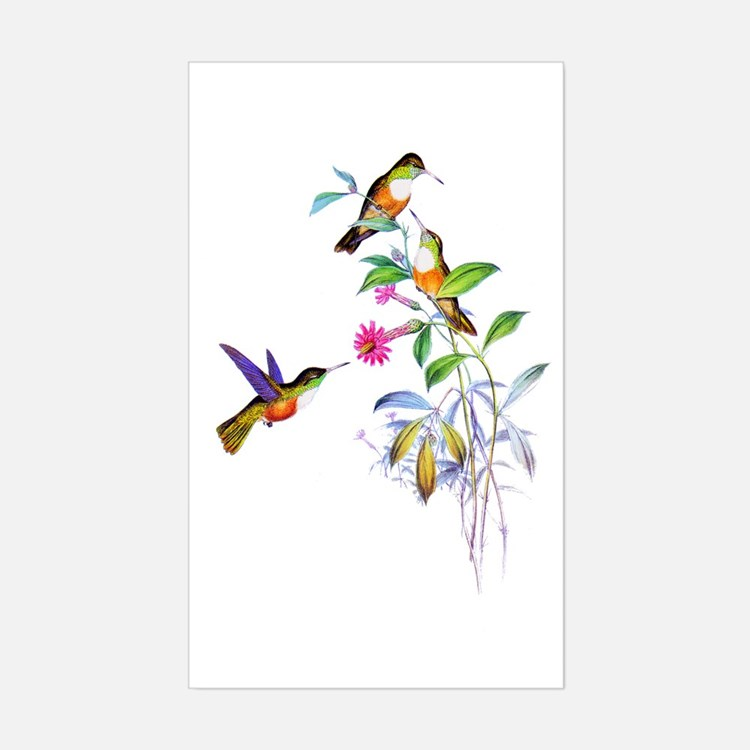 Hummingbirds Sticker (Rectangle)