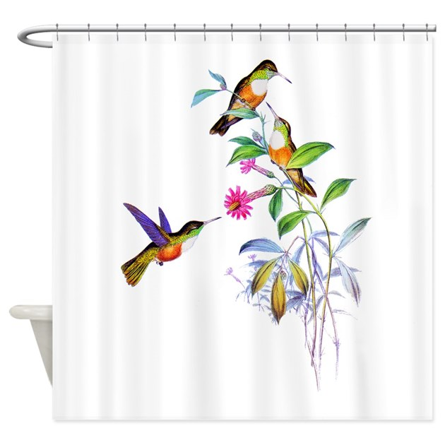 Hummingbirds shower curtain by birdsandflowers for Hummingbird decor