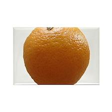 Orange Rectangle Magnet