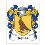 Aguas Coat of Arms Small Poster