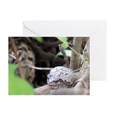 Sitting pretty Greeting Cards (Pk of 10)