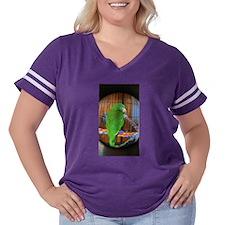 Go Ducks! T-Shirt