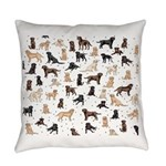 ROOSTER ROOSTER!! Everyday Pillow