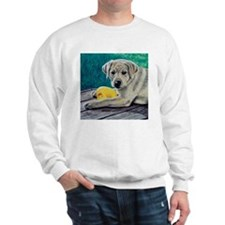 My Ducky Yellow Lab Puppy Sweatshirt