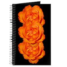 Talisman Rose Journal