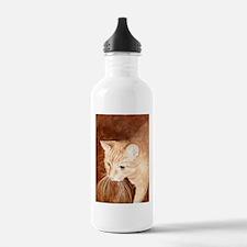 Dinner Water Bottle