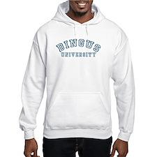 Dingus University Hoodie