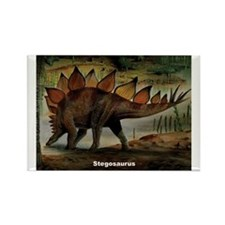 Stegosaurus Dinosaur Rectangle Magnet