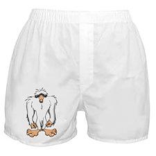 YETI Boxer Shorts