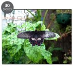 Black Butterfly Puzzle