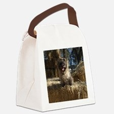fionahaysqd.JPG Canvas Lunch Bag