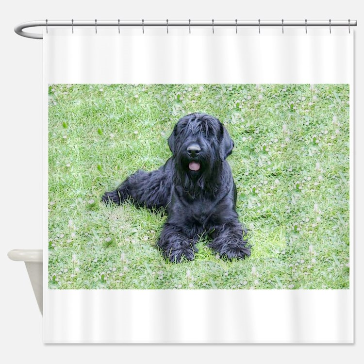 giant schnauzer Shower Curtain