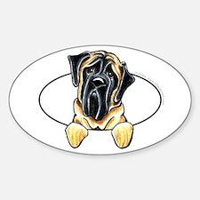 Mastiff Peeking Bumper Sticker (Oval)
