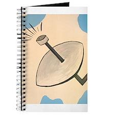 Satellite Journal