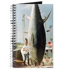 Tom's Big Tuna Journal