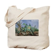 Chirostenotes Dinosaur Tote Bag