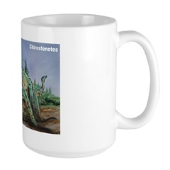 Chirostenotes Dinosaur Mug