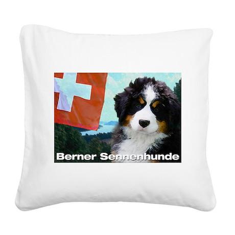 AU Senne 10x10_apparel.png Square Canvas Pillow