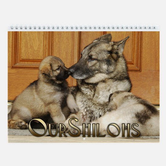 2013 OurShilohs Wall Calendar