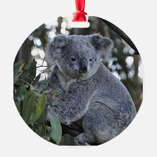 ANIMALS Ornament