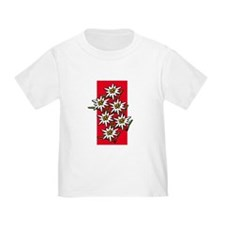 Edelweiss stack T