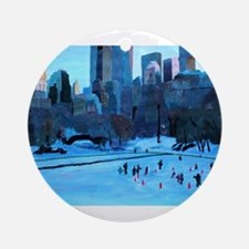 New York Central Park - Ice and Winter in Manhatta