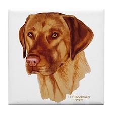 Fox Red Labrador Decorative Tile