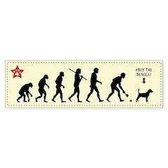 BEAGLE Evolution - Dog Bumper Sticker