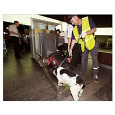 Airport security, explosives detection Poster