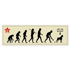 BOXER Evolution - Dog Bumper Bumper Sticker