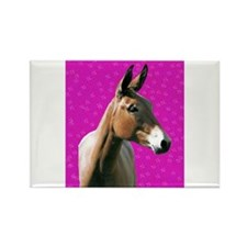 Pink mule head Rectangle Magnet