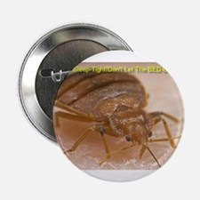 "Bed Bug Nightmares 2.25"" Button"