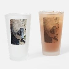 Curious Goose Drinking Glass