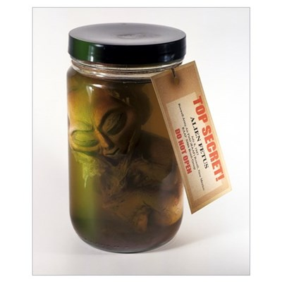 Alien in a jar, Roswell, New Mexico Poster
