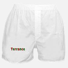 Terrance Christmas Boxer Shorts