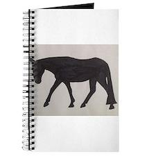 Mule outline Journal