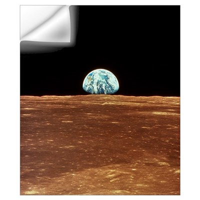 Apollo 11 view of Earth rising over Moon's horizon Wall Decal