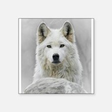 "White Wolf Square Sticker 3"" x 3"""