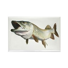 Toothy Musky Rectangle Magnet