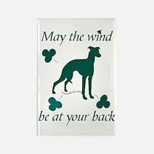Sighthound and Shamrocks Rectangle Magnet (100 pac