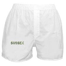 Sussex, Vintage Camo, Boxer Shorts