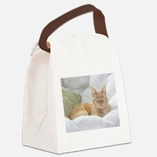 Simba Smiling Canvas Lunch Bag
